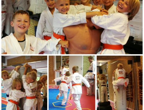 SKT – Small Kenpo Tigers
